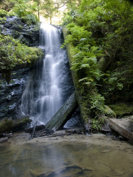 Nearby parks include Russian Gulch State Park, with its beautiful waterfall